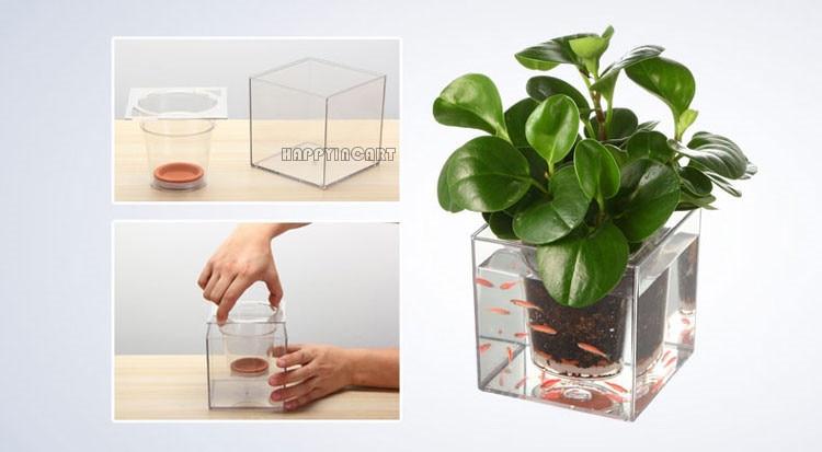 Como hacer una maceta en una pecera casa dise o for Planta arquitectonica de una oficina