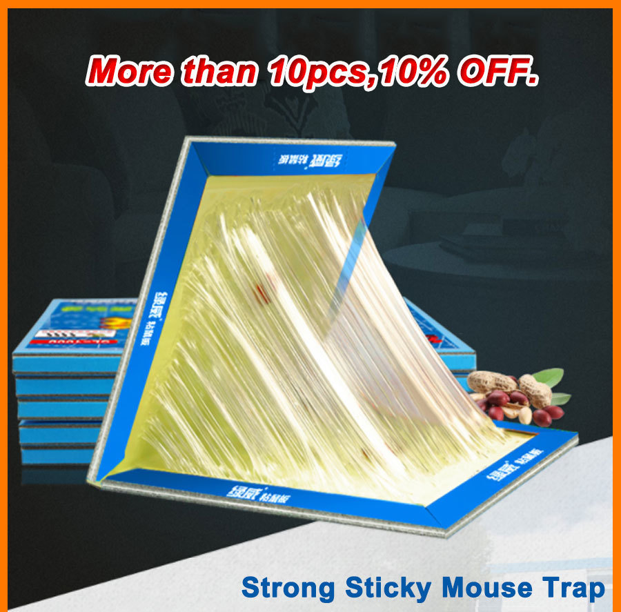 21x30CM Non Toxic Mouse Trap with Strong Glue to Stick Rats and Insects for Pest Control 6