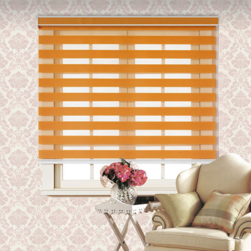 Window Zebra Curtain And Double Roller Blind For Canada USA House In  Curtains From Home U0026 Garden On Aliexpress.com | Alibaba Group