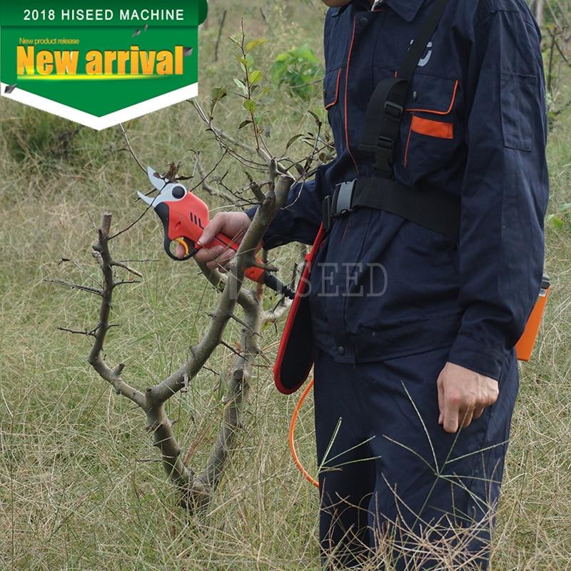 Le migliori forbici per alberi a batteria al litio (certificato CE - Attrezzi da giardinaggio - Fotografia 1