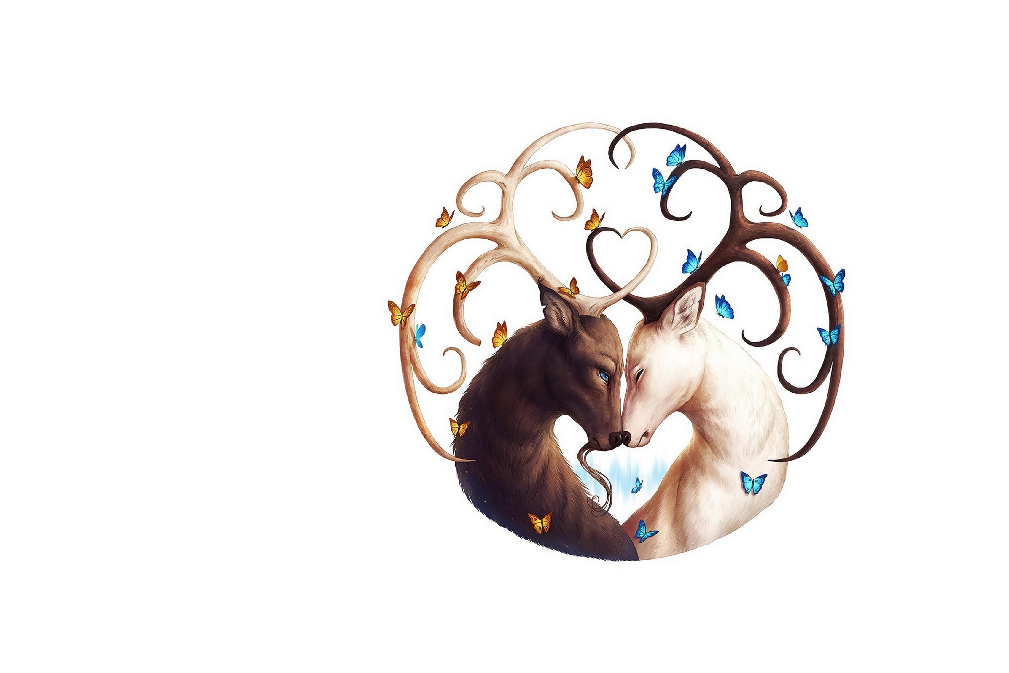 Simple Art Dessin Cerf Animal Couple Noir Blanc Salon