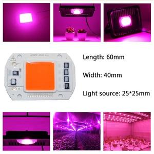 Image 4 - 100 pces ac110v 220 v cob led chip phyto lâmpada espectro completo 20 w 30 w 50 diodo led crescer luzes fitoampy para mudas interior