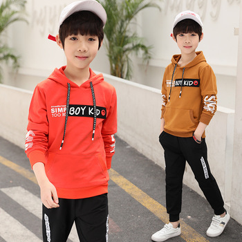 Spring New 2018 Casual Boy Tracksuit Pullover Jogging Set Childen Hoodies Sweatpants Sports Suit baby Children's Clothing Set