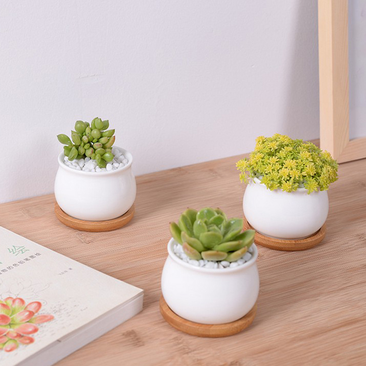 3Pcs/lot Home Garden Supplies White Creamic Flower Pots With BambooTrays Small Round Ceramic Planter Bonsai Pot For Succulent