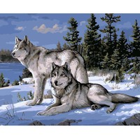 Wolf Animals No Frame DIY Painting By Numbers Kits Paint On Canvas Acrylic Coloring Painting By