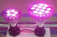 Iproled 12 Вт PAR38 дистанционного управления или WI-FI управления RGB/RGBW/rgbww/rgbcct и яркости dimmable пятно лампочки