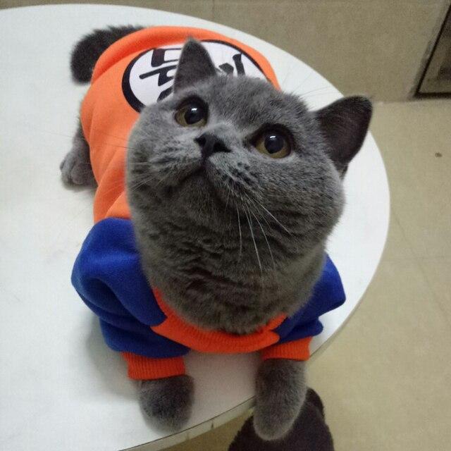 Stylový kostým pro kočky -