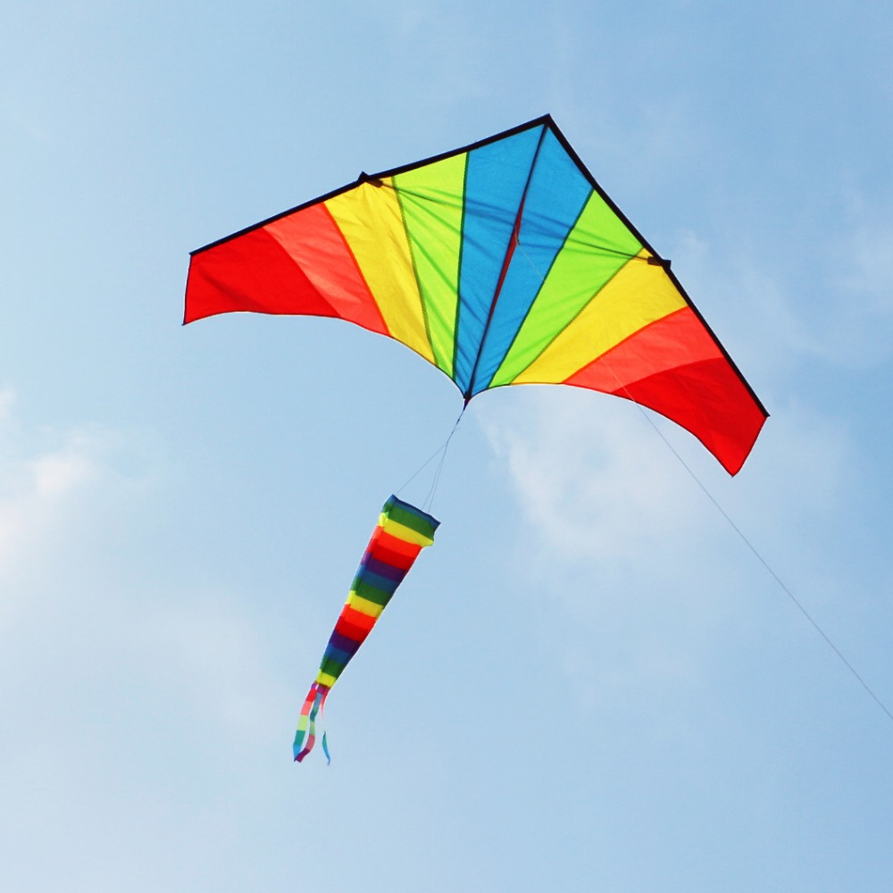 Free Shipping High Quality Large Rainbow Kite With Windsock Animal Kite Reels Flying Bird Toy Flying Door Styles Kite Kids Beach