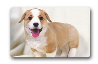 Hot Sale Custom Cute Puppies Dog Door Mat Art Design Pattern Printed Carpet Floor Hall Bedroom