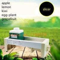 218 Update Commercial Use Slicer Machine Manual Apple Lemon Carrot Ginger Fruit And Vegetable Slice Machine