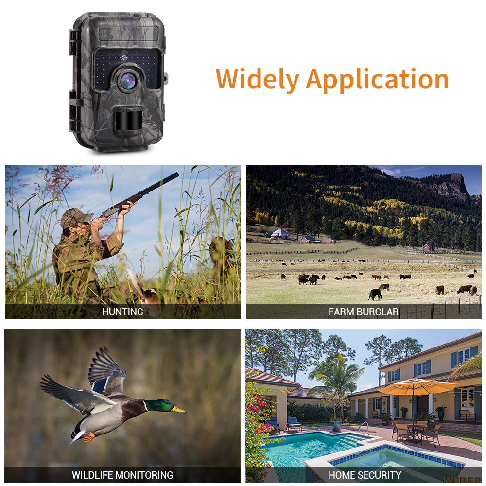 Image 3 - H662 Trail Camera 16MP 1080P Hunting Scouting Wildlife Cam 30pcs IR LED 940nm Night Vision 0.6S Trigger Waterproof Photo Traps-in Hunting Cameras from Sports & Entertainment
