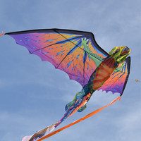 Kids Toy kite Power Kite Dragon Creative Stunt Kite Flying Dragon with long Tail Outdoor Sports Flying Kite For Adults