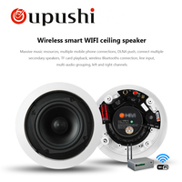 Oupushi VX5 C Two frequency division high quality Wifi Speaker 5.25 Inch 20W Round In Ceiling Home Theater Background Music