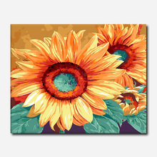 Oil Paint DIY Painting By Numbers Coloring Flower  And Calligraphy