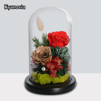 Kyunovia Preserve Fresh Roses Glass for Valentine's Day Rose Flower Immortal Mother Birthday Dried Flower With Gift Box KY74