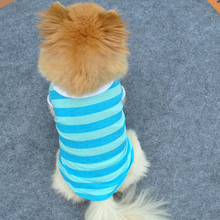 Dog Vest Stripe Polo shirt