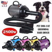 2800W Dog Grooming Dryer Variable Speed / Heat Pet Dog Cat Grooming Hair Dryer Blower Low Noise 5 Color