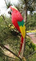كبير 40 سنتيمتر رغوة و الريش محاكاة الطيور الببغاء اليدوية ، تأثيري ، حديقة الديكور لعبة هدية