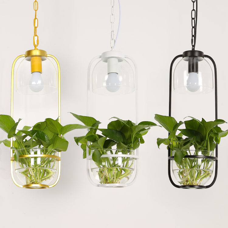 Creative Garden Plants Iron Glass Plant pendent lamp Restaurant Bar Corridor Balcony Creative deco Chandelier Chandelier N1305 resurrection plants hydrophile jericho rose plant