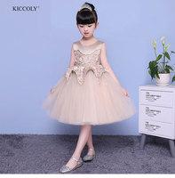 KICCOLY Kids Baby Girls Beautiful Flower Dress Sleeveless Khaki Tutu Dress Children Fancy Princess Ball Gown