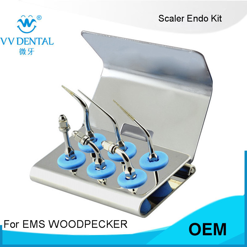 1 SET EMS WOODPECKER DENTAL TIPS ENDO KIT EEKS fit SYBRONENDO WITH endo TIP endodontic instrument брюки endo брюки