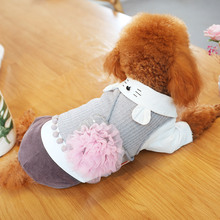 Cute Pet Outfit With Flower