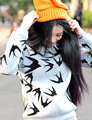 Zehui Style Women Winter Autumn Swallow Pattern Sweatshirt Pullover Long Sleeve Loose Jumper
