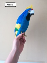 new real life blue parrot model foam&feather simulation cockatoo bird gift about 40cm xf0201