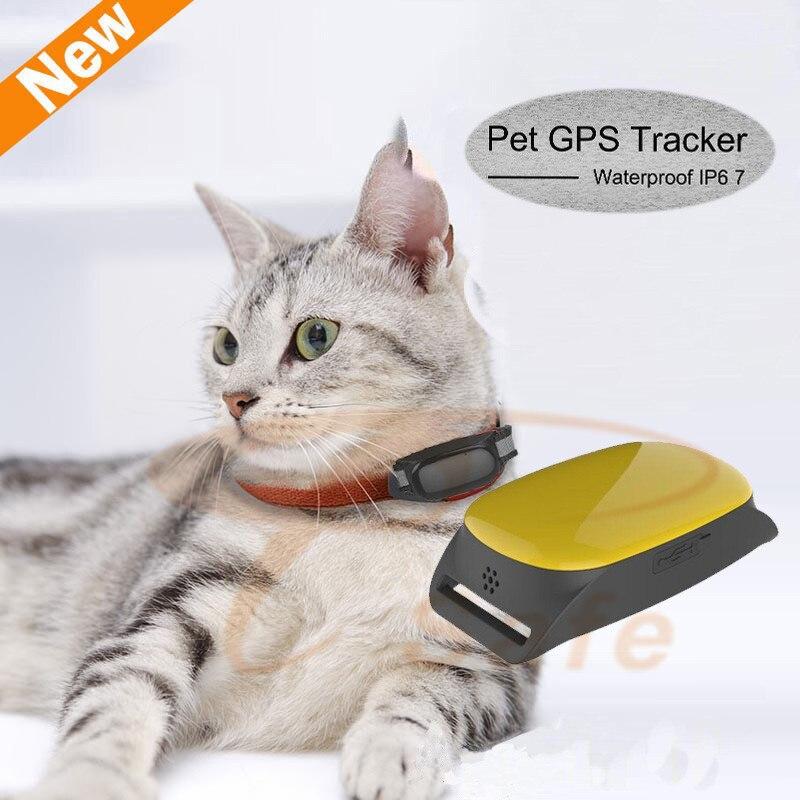 Mini Cat dog font b GPS b font Tracker with Collar Waterproof Real Time Locator Rastreador