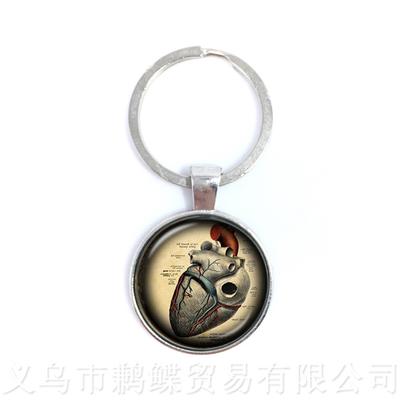 Steampunk Human Anatomy Organ Keychains Glass Cabochon Science Medical Punk Pendant Glass Dome Brain Eye Jewelry Keyring