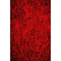 Valentine S Day Vinyl Photography Backdrops Red Roses Customized Computer Printed Background Love Valentine 5X7ft F
