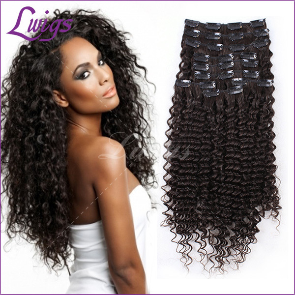 African American Clip In Human Hair Extensions Brazilian Curly