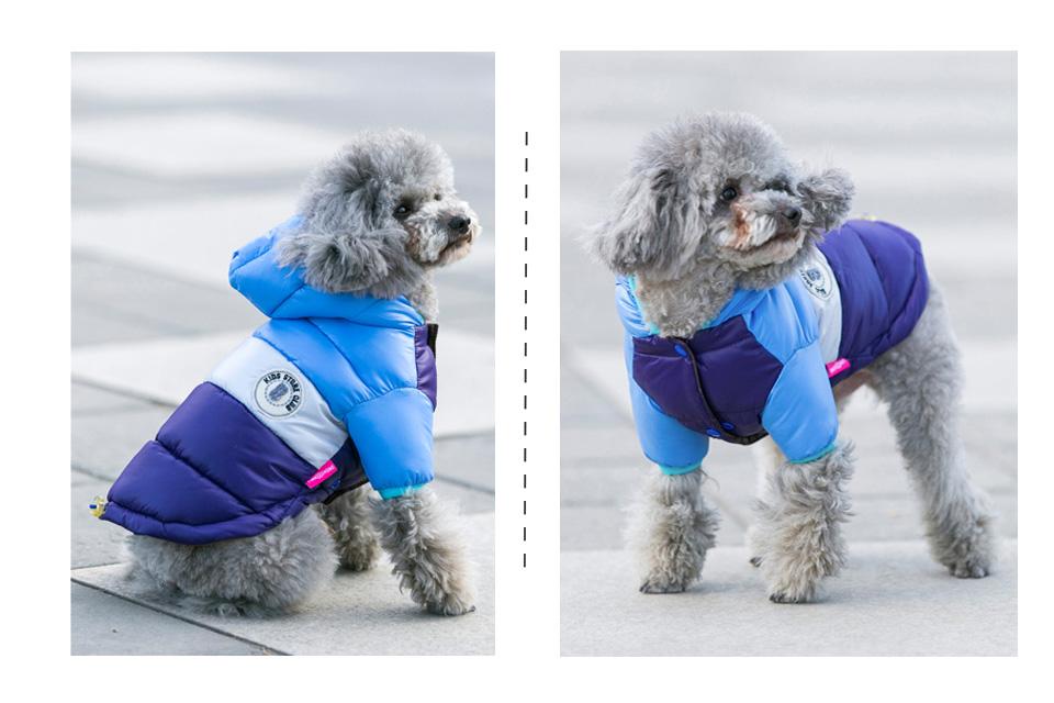 Winter Pet Dog Clothes Waterproof Warm designer Jacket Coat S -XXL Sport Style Puppy Hoodies Hat for Small Medium PETASIA 305