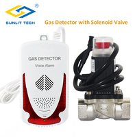Gas Detector Household Combustible Gas Leak Detector Natural Gas Sensor LPG Alarm System with Solenoid Shut off Brass Valve DN20