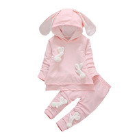 Baby Girls Clothes Set 2017 Autumn Winter Baby Girls Set T Shirt Pants 2pc Outfit Suit