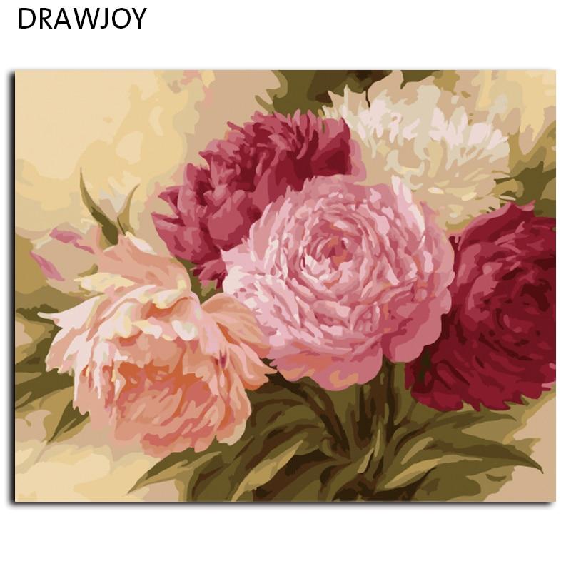 Drawjoy frameless decorazione della parete immagini diy pittura by numbers dipinto a mano su tela per soggiorno fiore g429 40*50 centimetri