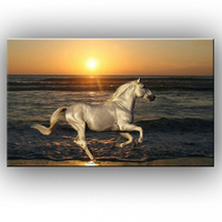 NEW 100% hand painted The sunshine on the beach a horse Oil Painting On Canvas Wall Art Decoration sitting room 151231168