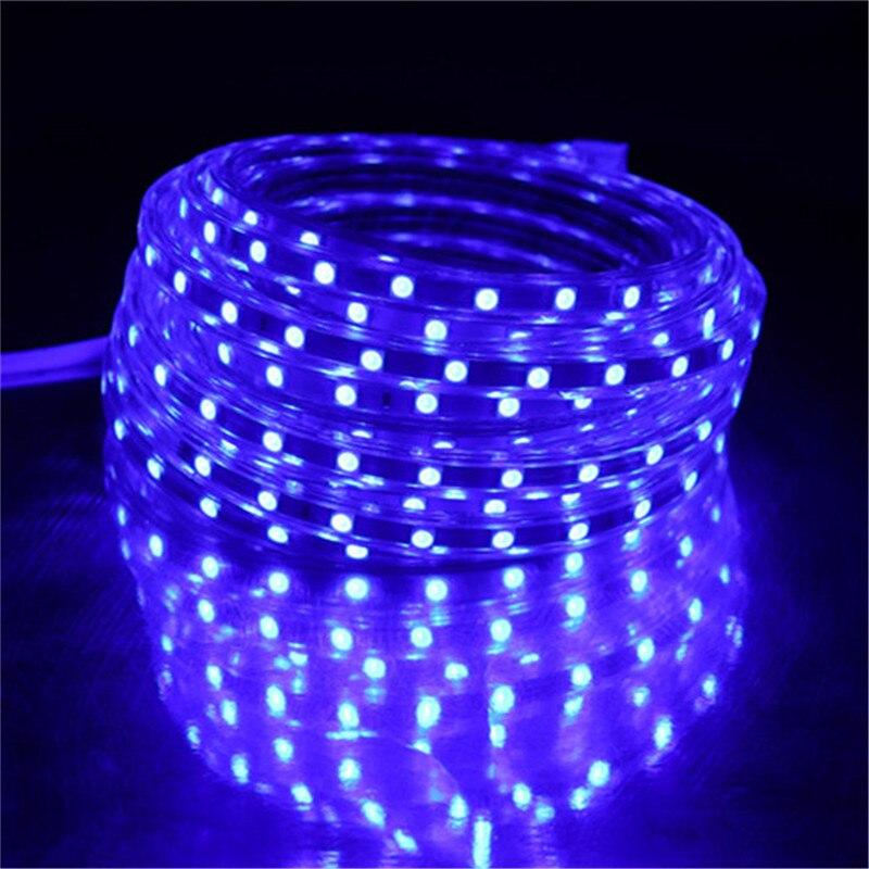 5050 Flexible LED Strip Light AC220V 60leds/m Waterproof IP67 Led Tape LED Light With EU Power Plug 1M/2M/3M/4M/5M/10M/15M/20M