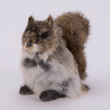 new simulation Squirrel toy lifelike natural color Squirrel model gift about 20x10x14cm