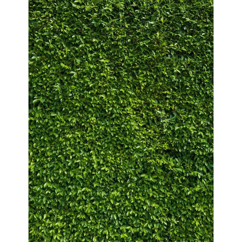 Fotografie op maat zoals een groene grascomputer Digitale - Camera en foto - Foto 1