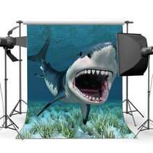 Cartoon Shark Backdrop Underwater World Green Grass Aquarium Ocean Sailing Photography Background