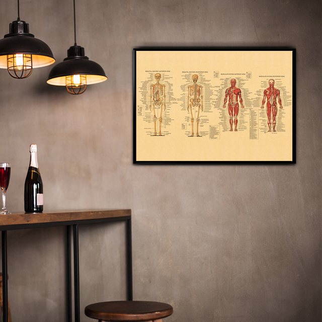 Aliexpress.com : Buy Kraft Paper Poster of Human Body Structure ...