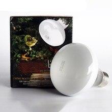 Reptile Heated Lamp 50w 75w Light White UVA Day Night Amphibians For Pet Animal Bird Snake Terrariums Bulb 220V