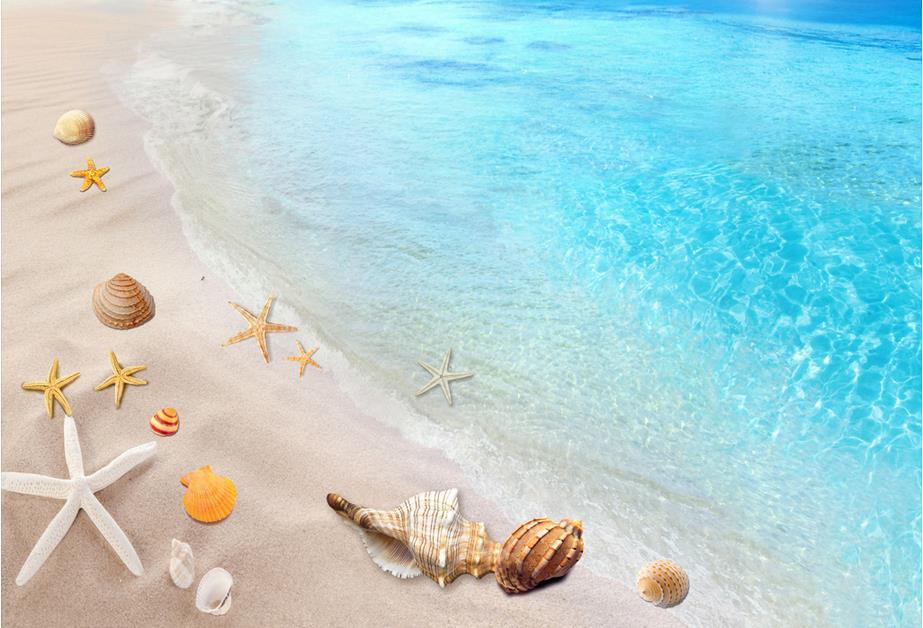 3d Piano Pittura Wallpaper Spiaggia Mare Conchiglie E Stelle Marine