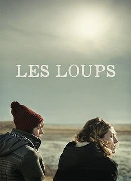 《迷途之狼》2014年加拿大,法国剧情电影在线观看