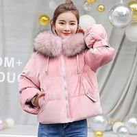 Spring Winter Large Raccoon Fur Collar Short Women's Velvet Down Jacket Female Thick padded cotton Coat Outerwears Parkas female
