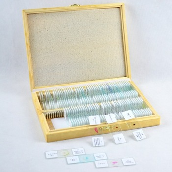 Wholesale and retail 100 pieces mixed set Prepared microscope slideWholesale and retail 100 pieces mixed set Prepared microscope slide