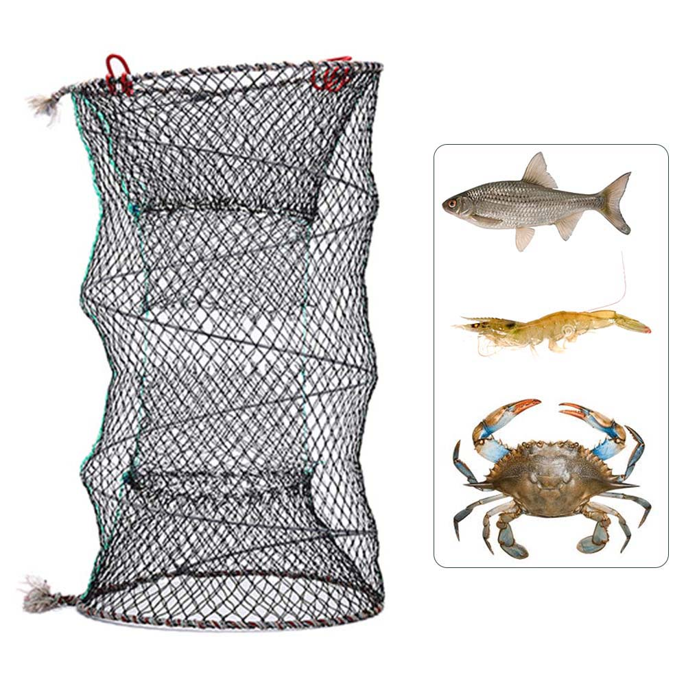 US $4 07 23% OFF|Fishing Collapsible Trap Cast Keep Net Crab Crayfish  Lobster Catcher Pot Trap Fish Net Eel Prawn Shrimp Live Bait 2019-in  Fishing Net