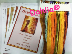 Рукоделие для вышивки DIY DMC цветы девочка и лошадь крестиком наборы 14CT Счетный напечатанный картина маслом домашний декор искусство