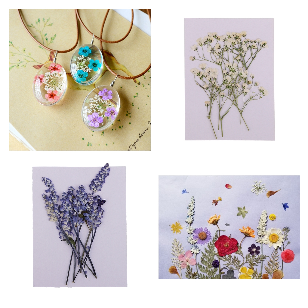 20x Pressed Dried Flowers For DIY Phone Case Bookmark Resin Jewelry Crafts